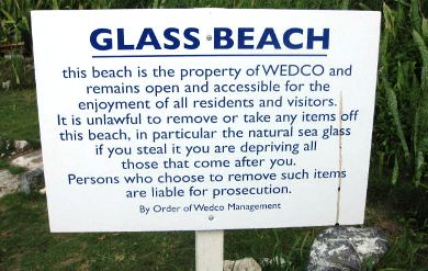 Sign Prohibiting Collection Of Sea Gl